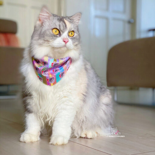Custom Pet Bandanna: Neckerchief Dog and Cat Bandana