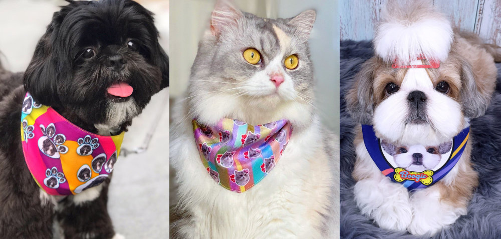Customized Sublimation Pet Bandanna - Dog and Cat Bandana